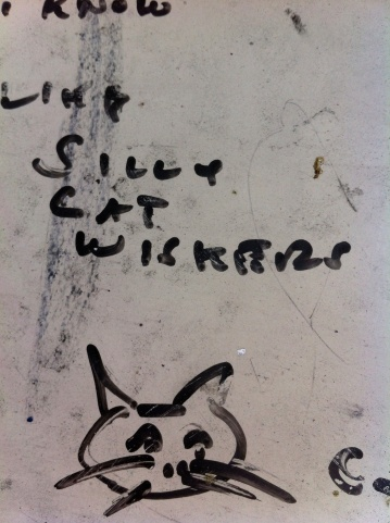 """Like silly cat whiskers""  Oakland, 2013"