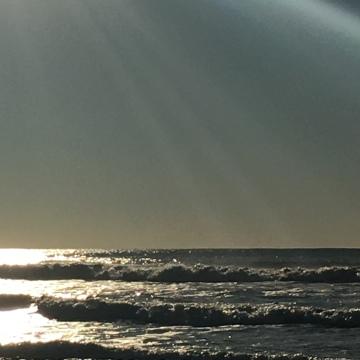 Ocean Beach 12-31-15
